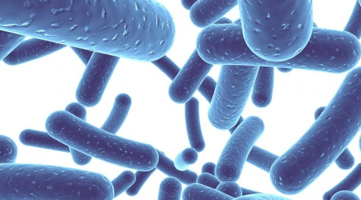 probiotics-antibiotics-my-gut-matters