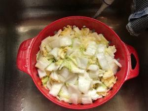 probiotic kimchi wash