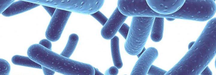 probiotics-antibiotics-my-gut-matters